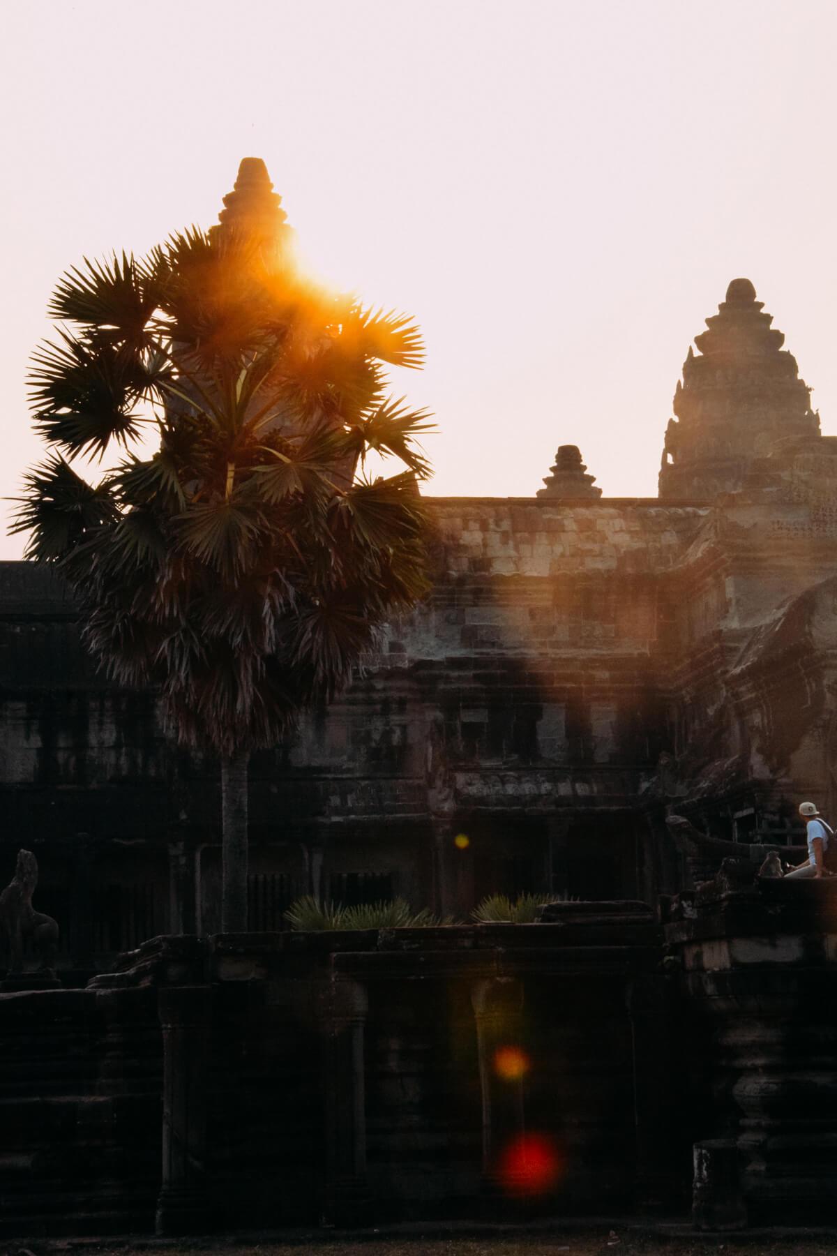Ankor Wat Wunschleder Muster